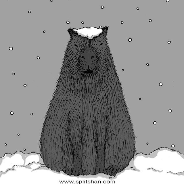 capybara - partof_shan | ello