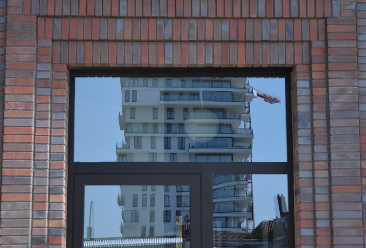 Oostende - lunabloom   ello