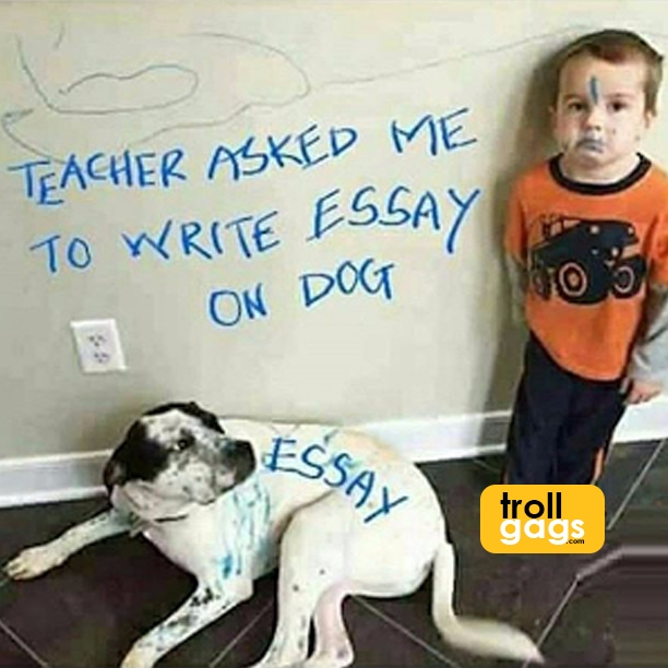 Teacher asked write essay DOG  - trollgags | ello