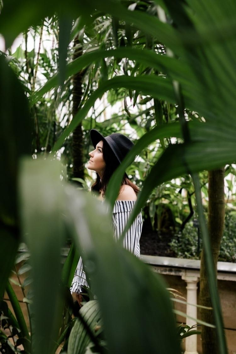 kew gardens - 2017 - jono_shaw | ello