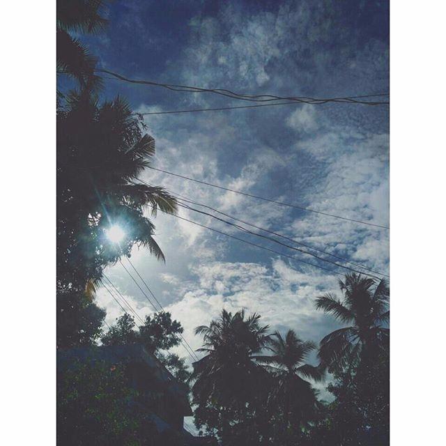 Bright day - sunny, photography - athulnair | ello