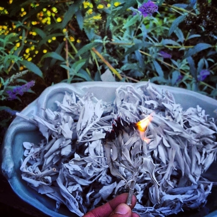 flicker flame wisp smoke mornin - grayvervain | ello