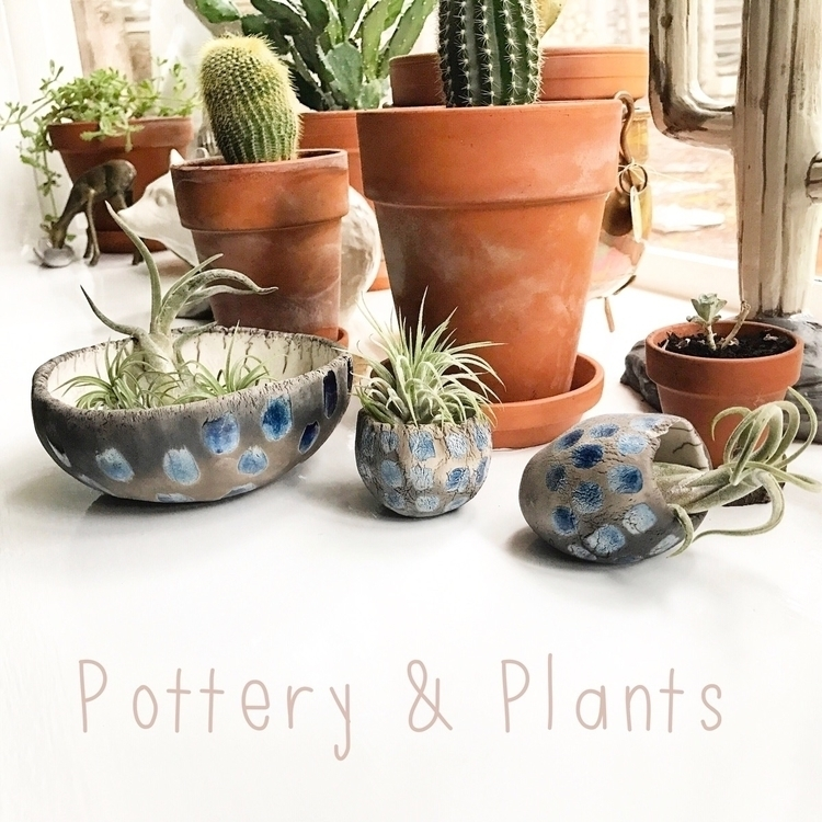 heard grapevine pottery plants  - highyieldstudio | ello