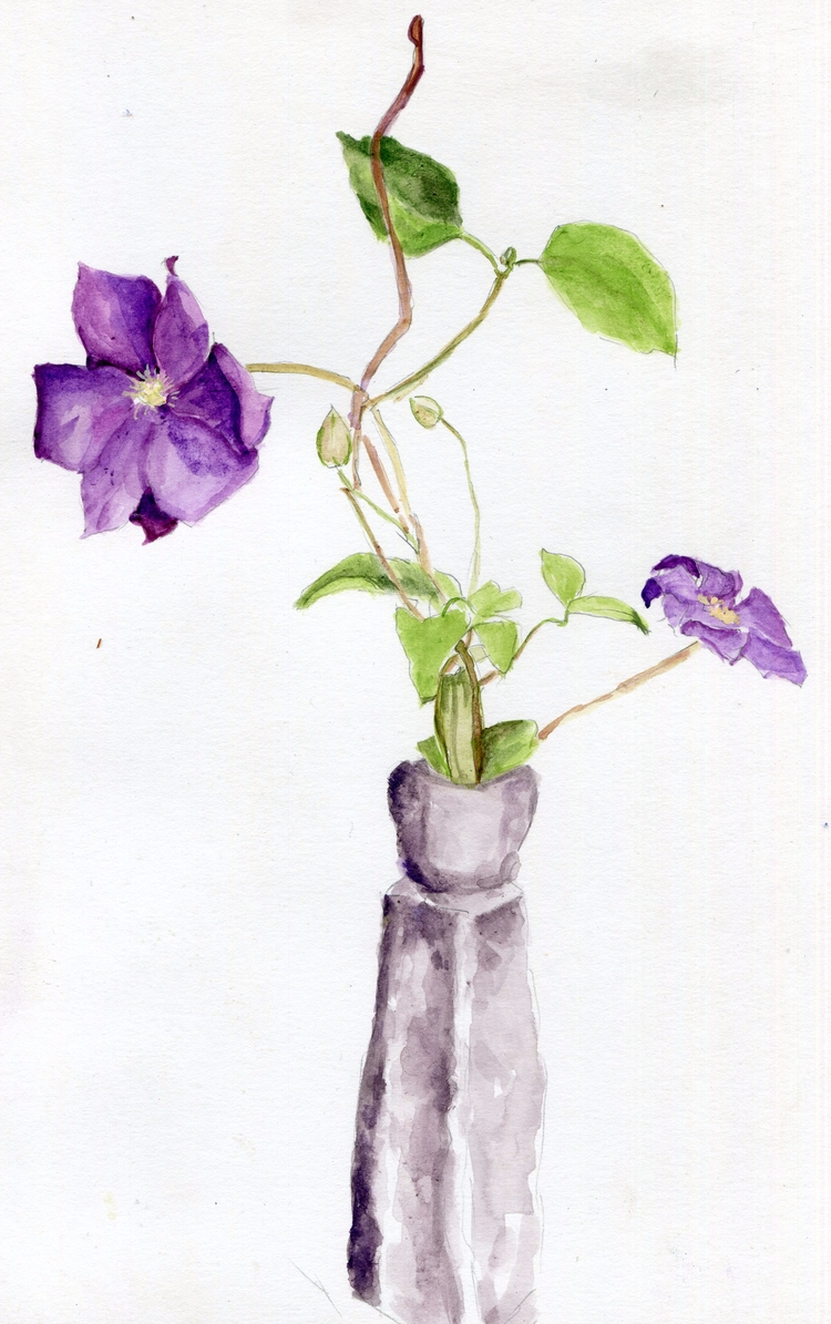 Violette Watercolor Gouache Bri - havekat | ello