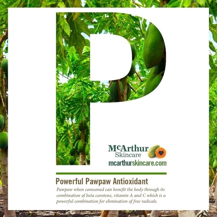 Pawpaw powerful antioxidant con - mcarthurskincare | ello