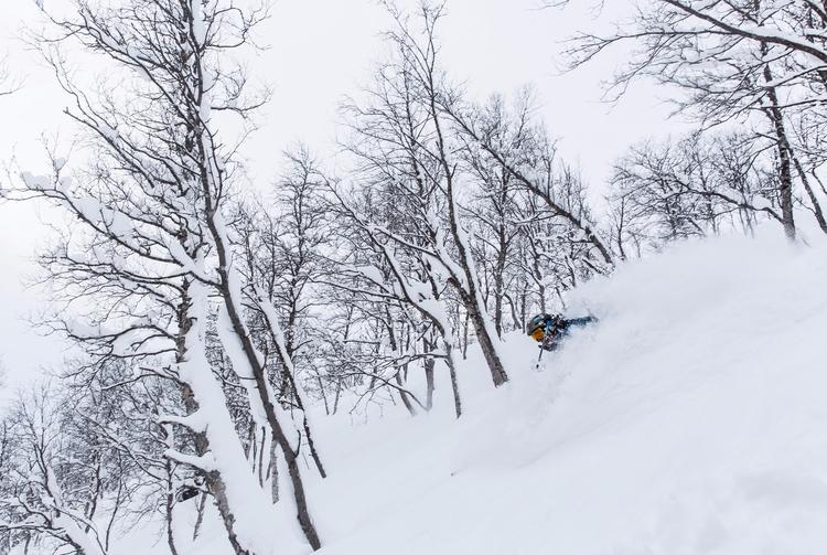 Good ski memories Norway - telemark - varonka | ello