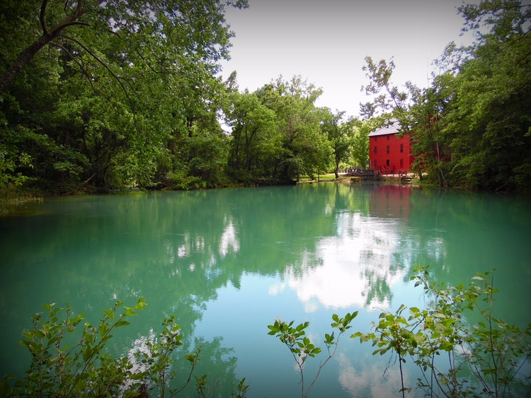 nature, spring, water, red, photography - elizabeth_rose_77 | ello