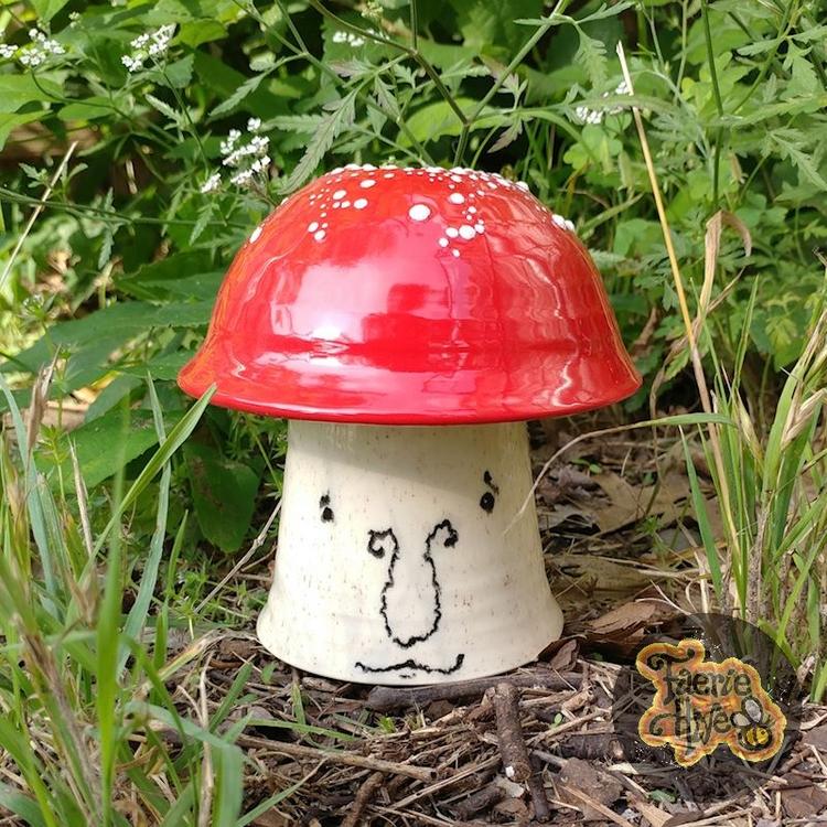 raining mushrooms popping yard - olisny | ello