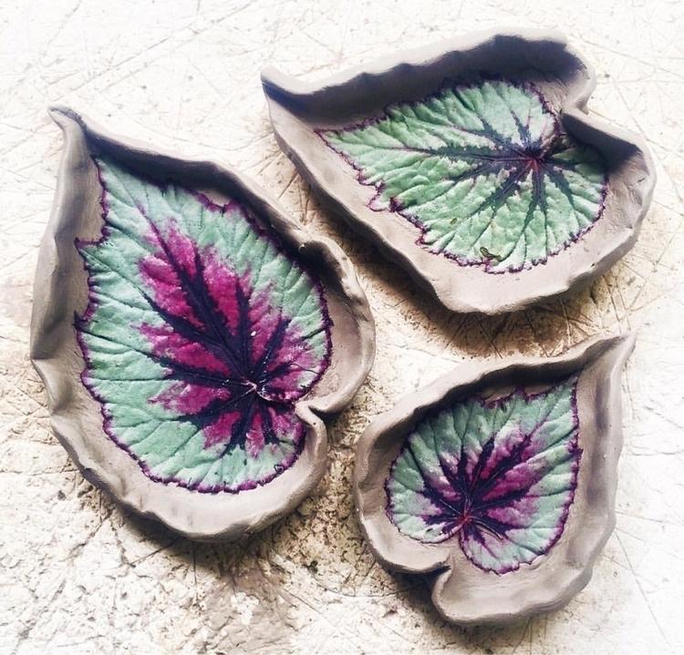 Rex begonia leaf plates - naturelover - elanpottery | ello