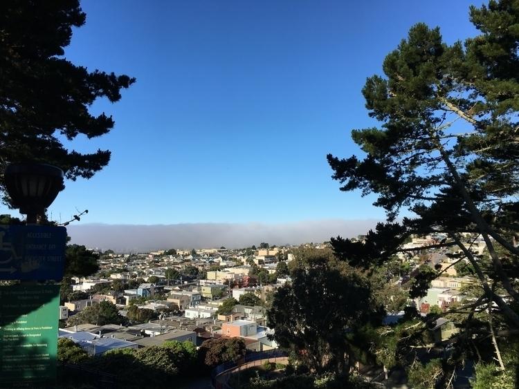 Fog San Francisco - fog, SF, Hatun - hatun   ello