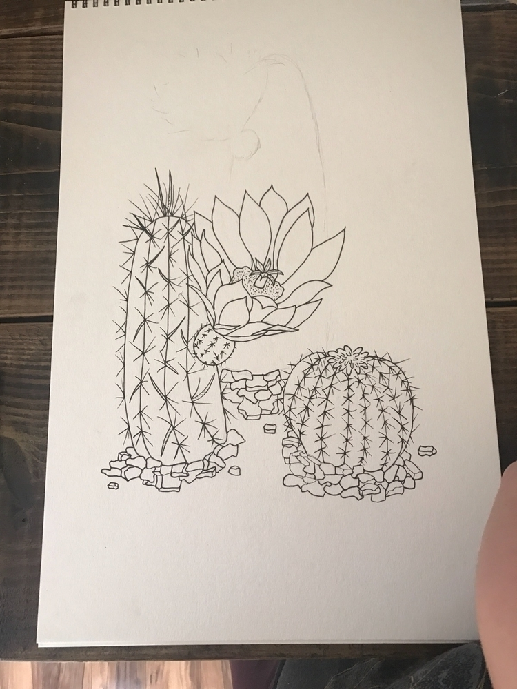 Workin - cacti, pigmamicron, art - wildflowerramblings | ello