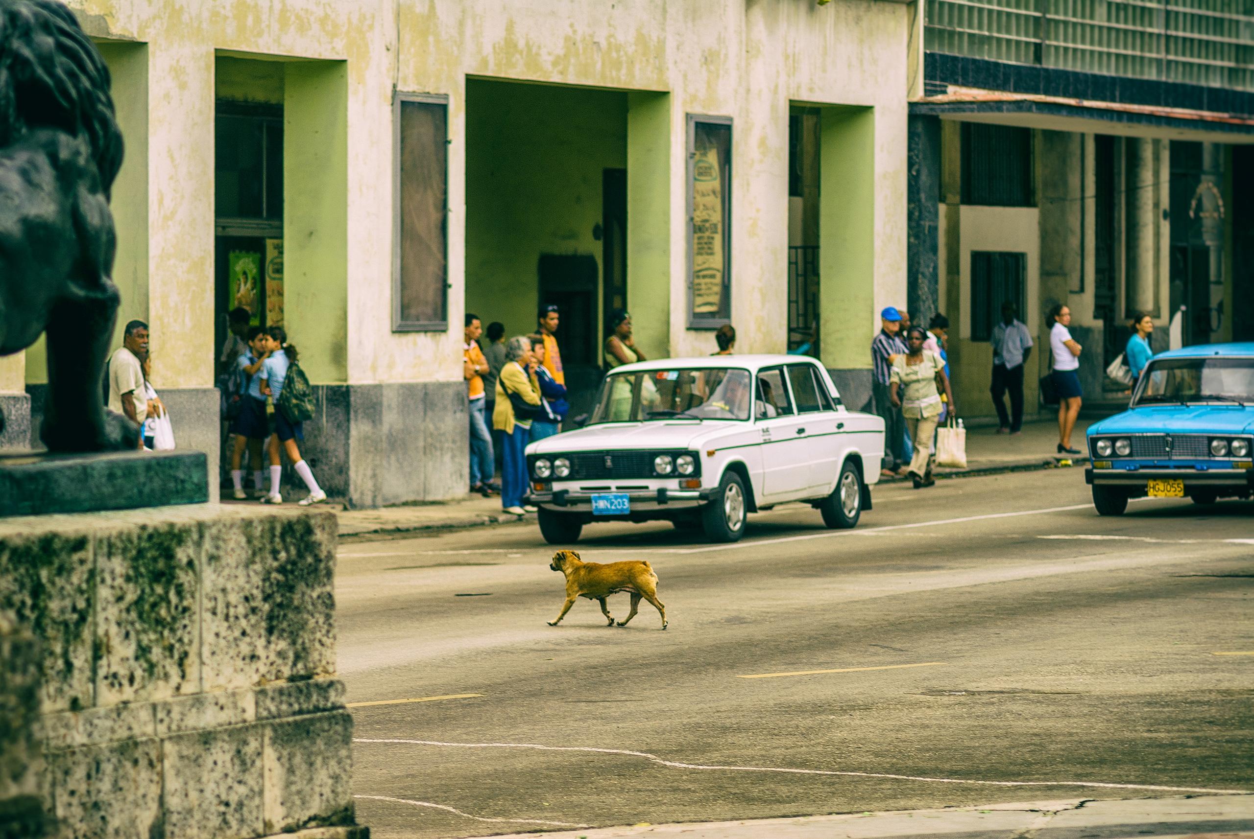 mistress damned, crossing - Habana - christofkessemeier | ello