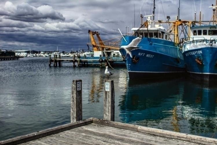 Fremantle, Australia 28mm 1/320 - darcynicolson | ello