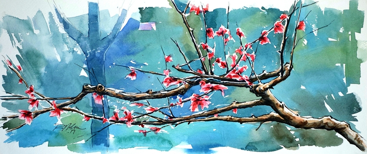 Cherry Blossoms, Watercolor - rlnelsonmo | ello