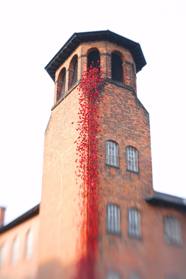 derby, poppies, 1418now, poppiestour - pdjbarber   ello