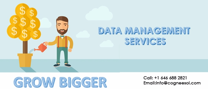 Outsourced data management serv - annewmartinez | ello