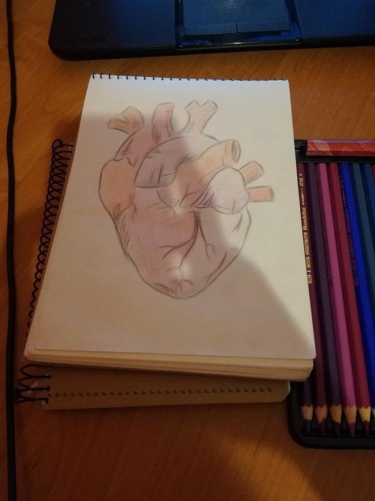 felling inspired - ilustration, drawing - iamella | ello