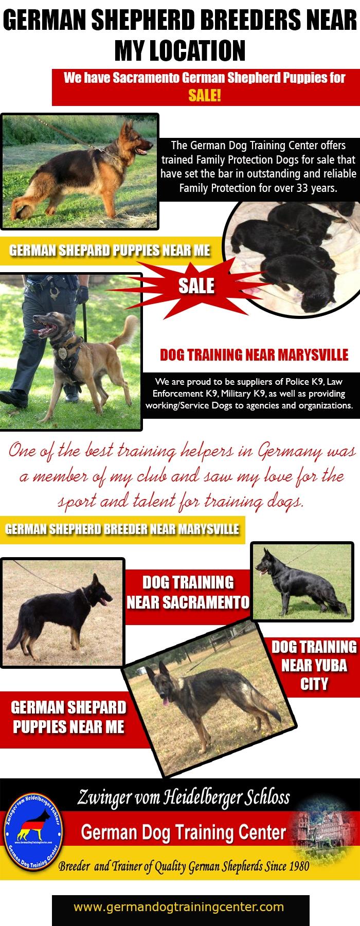 German Shepherd Breeders Locati - marysvilledogtraining | ello