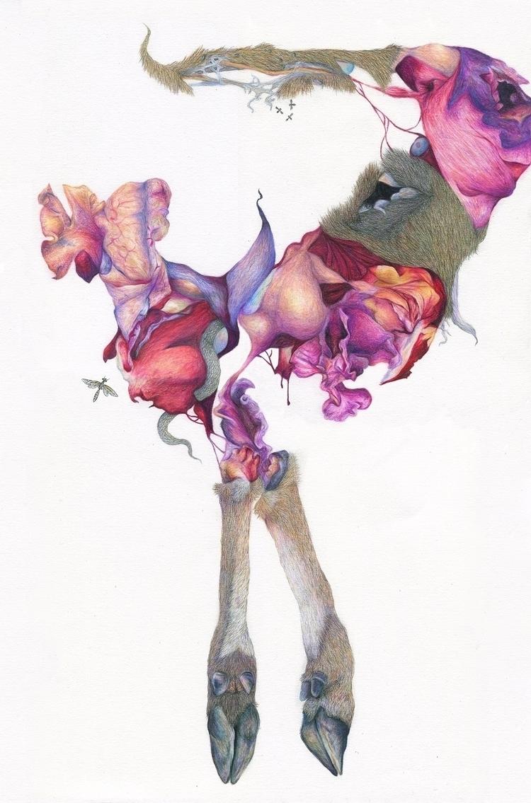 Fruition - hooves, deer, floal, flowers - hannahward | ello