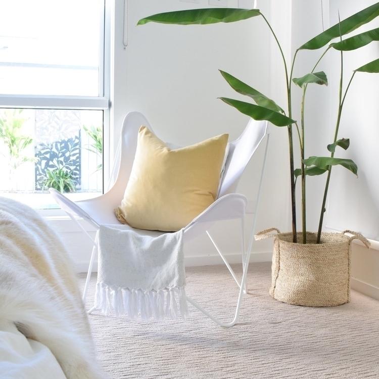 Whites, natural light mustard f - refinendesigns | ello