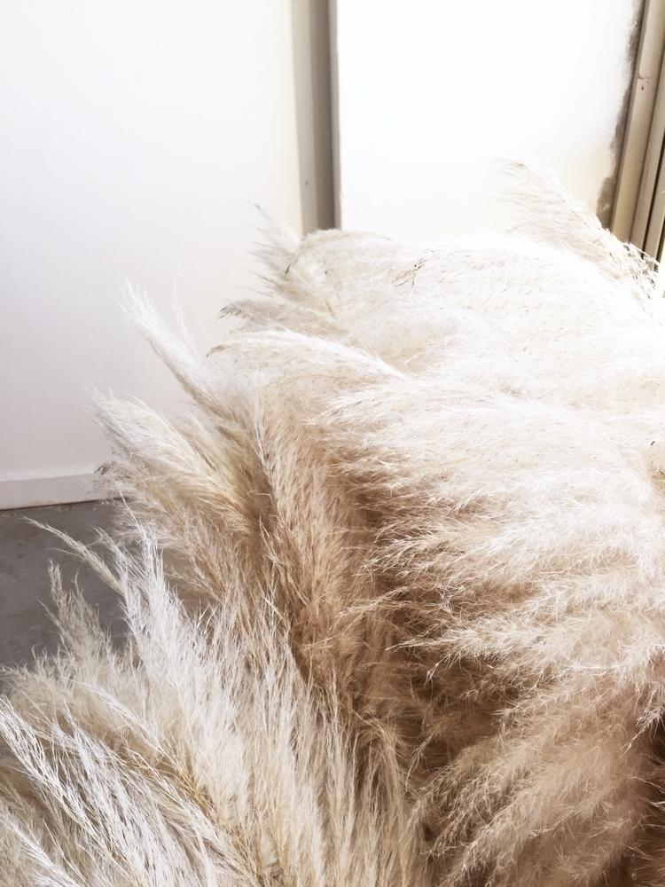 Piles pampas - blondeandbone | ello