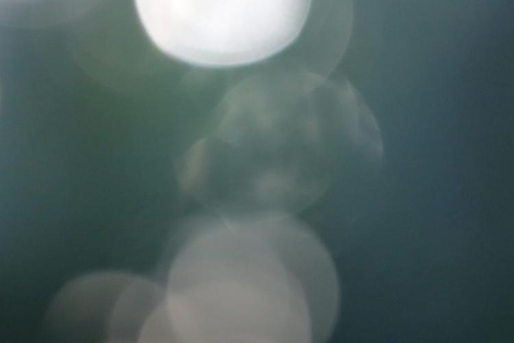 Automatic photo, wing holding l - donni-didit | ello