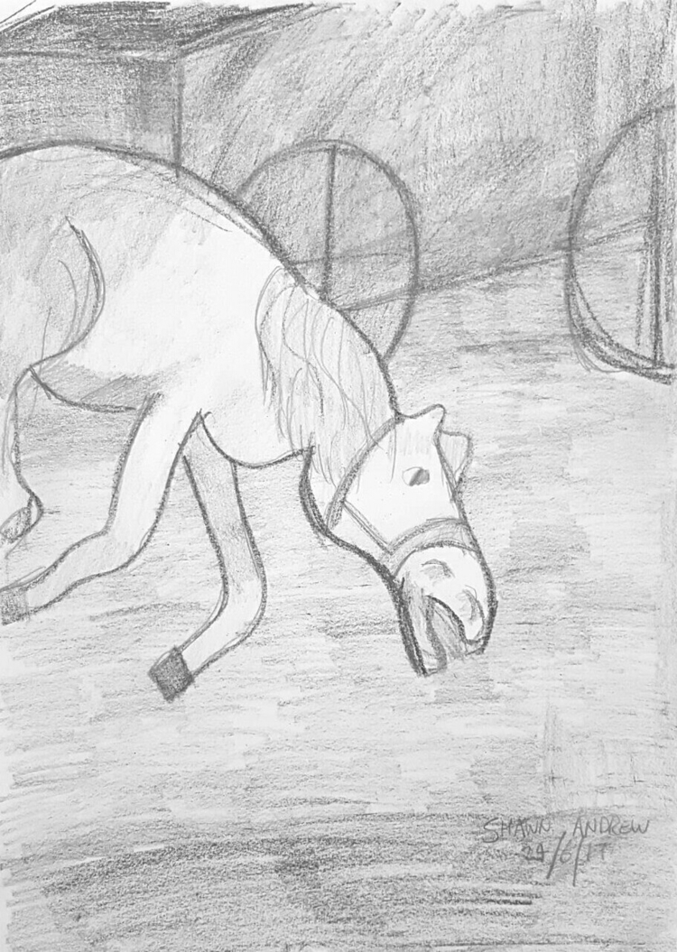 exhausted horse - Crayon graphi - shawnartist | ello