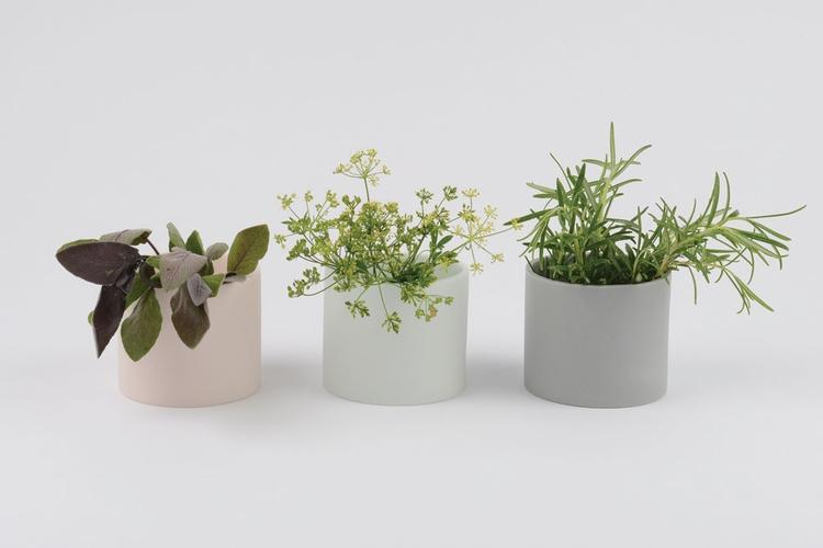 future independent ceramic indu - futurepositive   ello