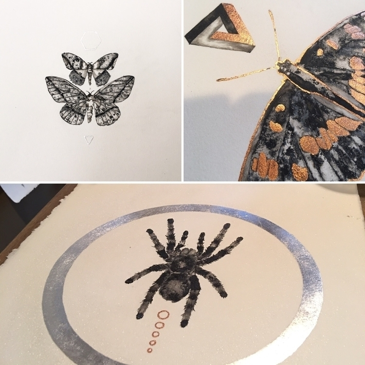 ink paintings - tarantula, butterfly - alexakarabin | ello