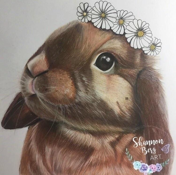 pastel bunny favourite pieces w - shannonbergart | ello