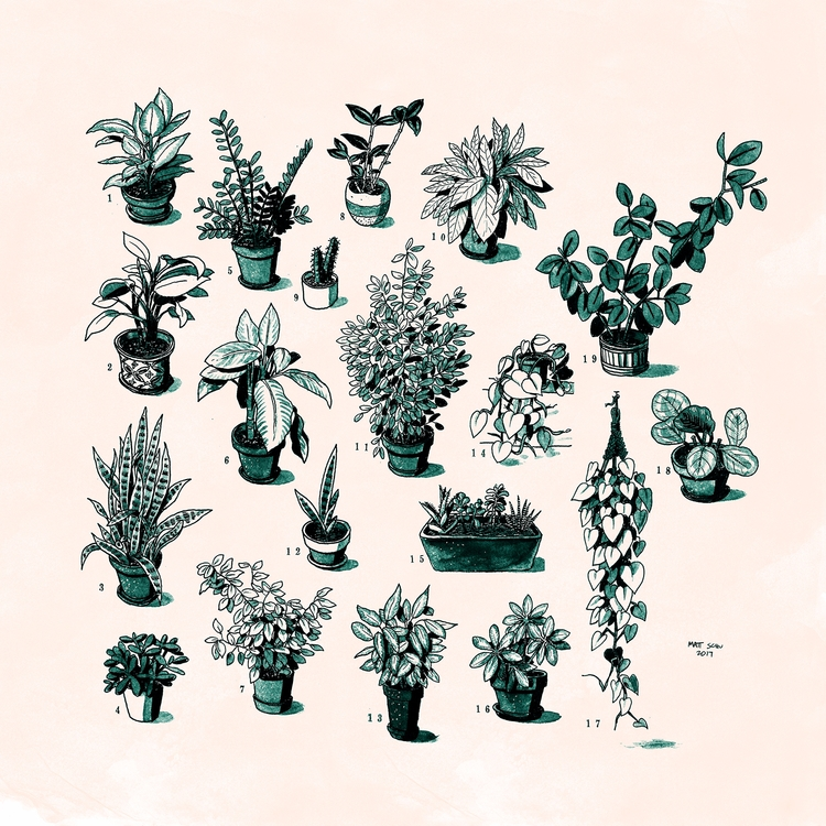plants - art, illustration, drawing - mattschu | ello