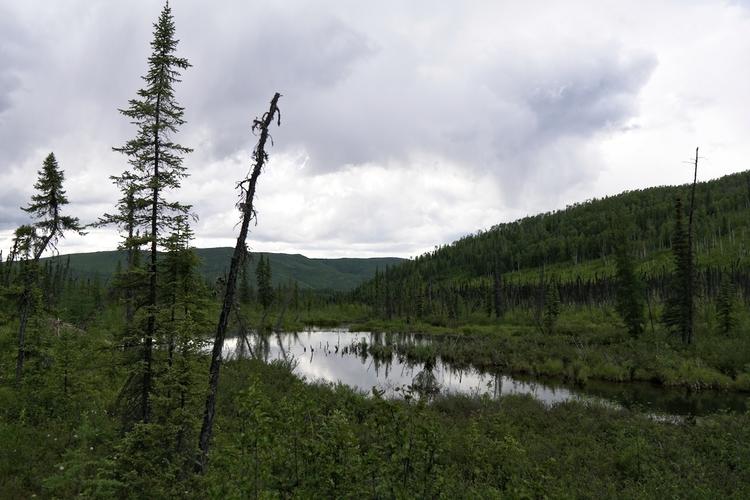Granite Tors Trail - Chena Rive - lwpetersen   ello