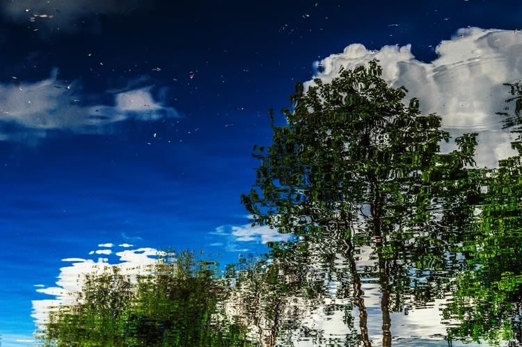 Reflections - photography - tecnonaut | ello