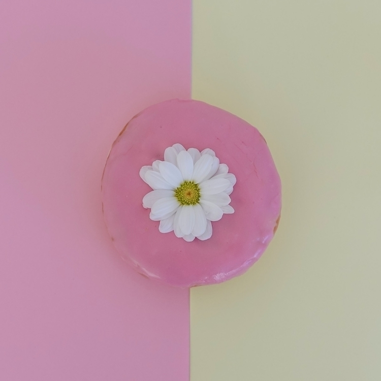 Donut incredible - donut#pink#flatlay#fun#photographer - trishevansphotography | ello
