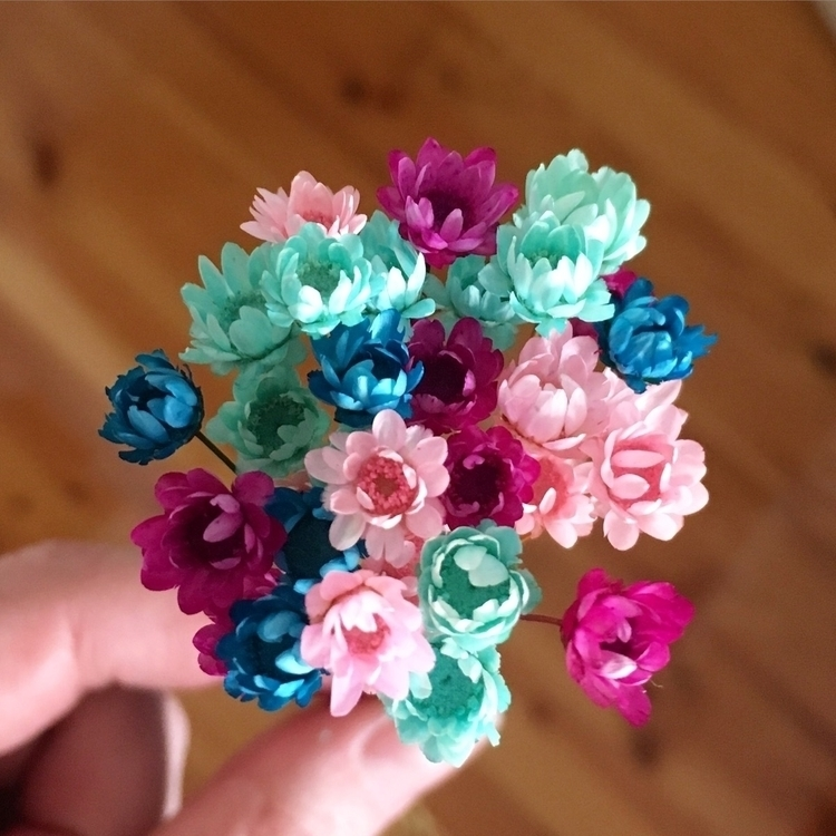 Blooms beautiful colours - thatlittlenook | ello