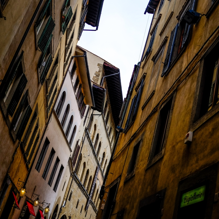 Florence, November 2016 - carolinegreg | ello