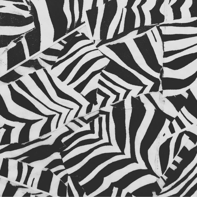 Zebra/Dazzle PDX - jtc | ello