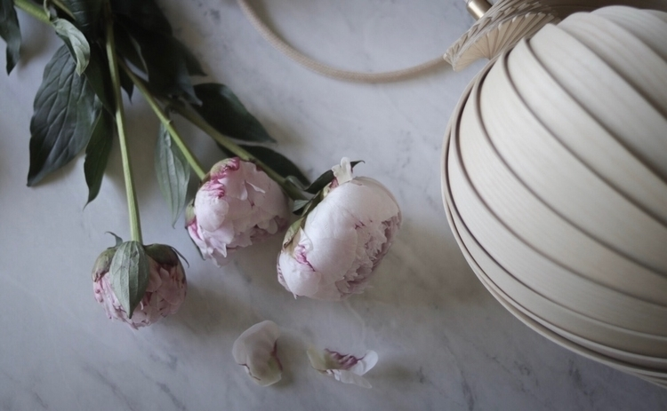 table - photography, peonies, kovacfamily - willowstyleco | ello