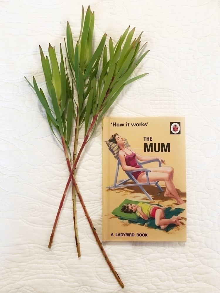 favour, buy book gift mumma goo - ellimestrom | ello