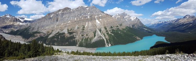 Peyto Pano Lake Banff National  - camwmclean | ello