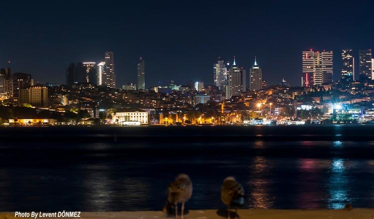 Seagulls....Istanbul ... Night  - leventdonmez | ello