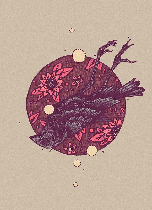 ate, illustration, art, bird - esze_ate | ello