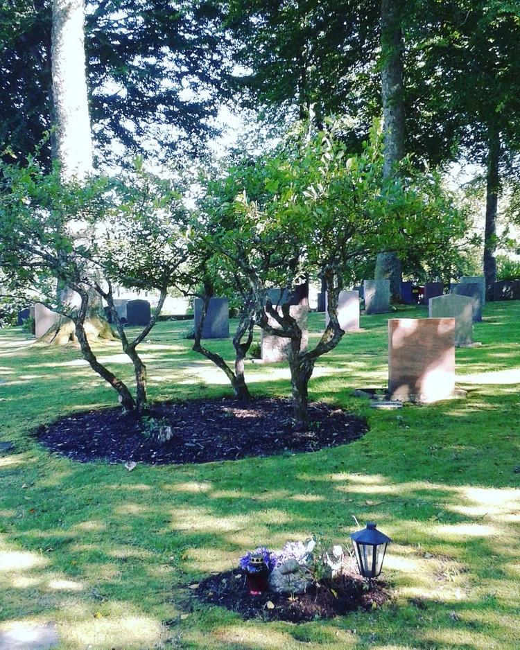 Smått stort på Skogskyrkogården - skogskyrkogardar   ello