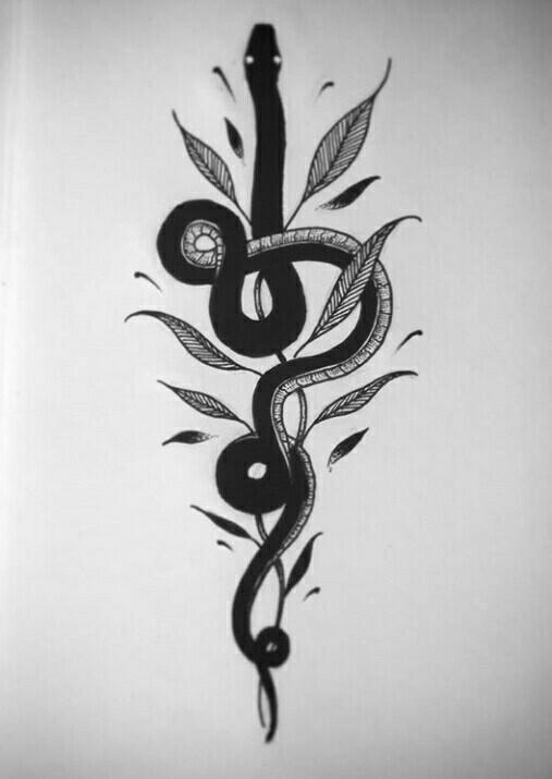 Squamata - squamata, serpent, serpente - leonardofrey | ello