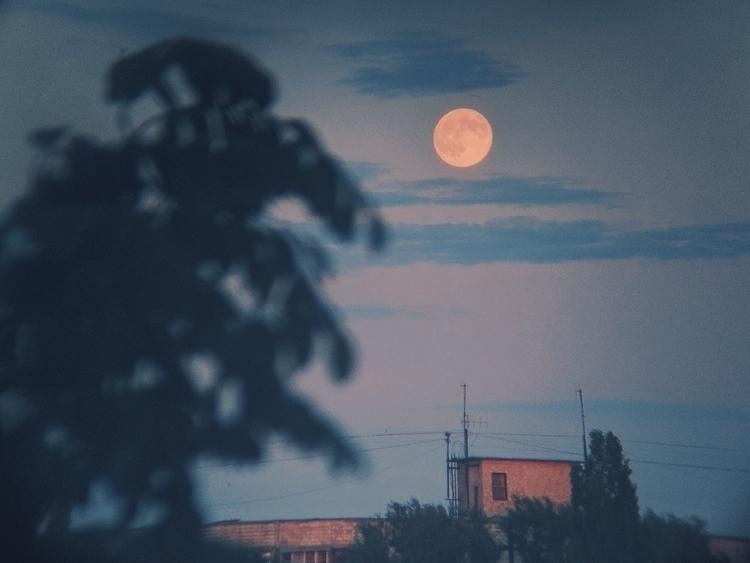 moon, mobilephoto, photography - oblepiha | ello