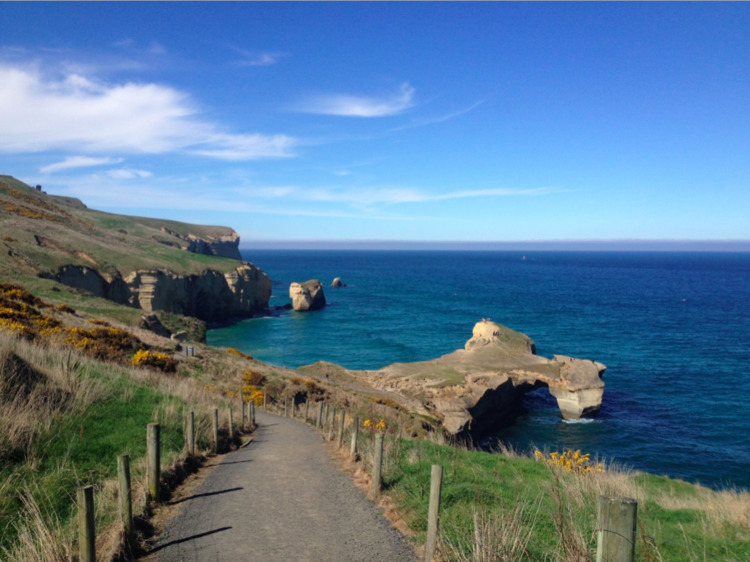 newzealand, beauty, backyard - mariasimpson | ello