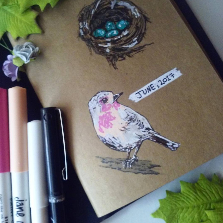 cute robin birb drawn paint pen - katrina_stautihar | ello