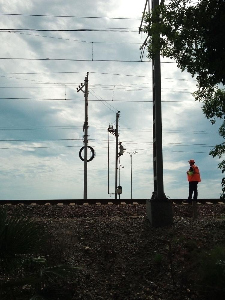 electro, ditroitsochi - swamikalki | ello
