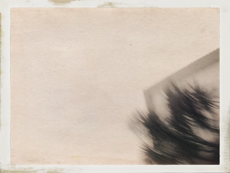 shot - snap, snapshot, snapped, photo - thenumber73 | ello