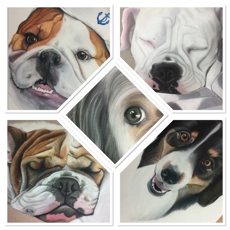 Dog spam - bulldog, penrithartist - shannonbergart | ello
